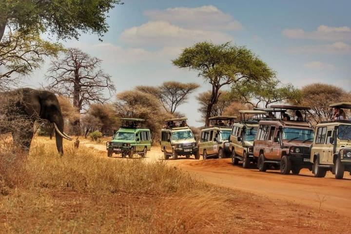 Safaris 3 Days Tarangire…