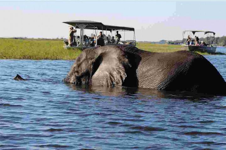 5 days / 4 night Zambia discover…