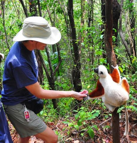8 Days to Discover Madagascar