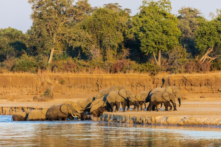7 Days Zambia Tour – From…