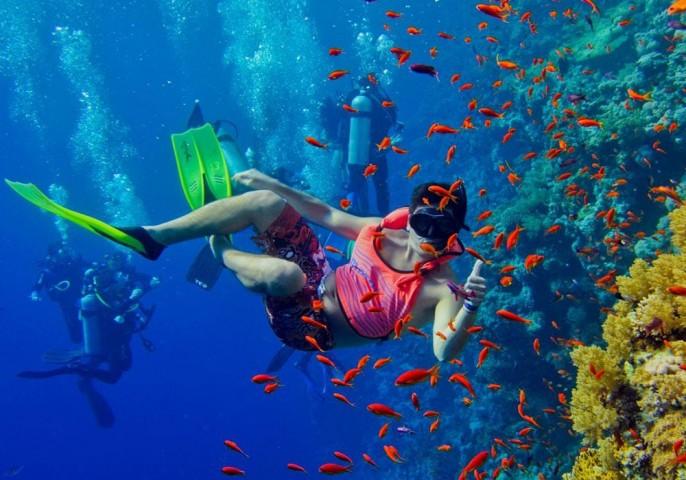 Snorkeling Trip to Mnemba…