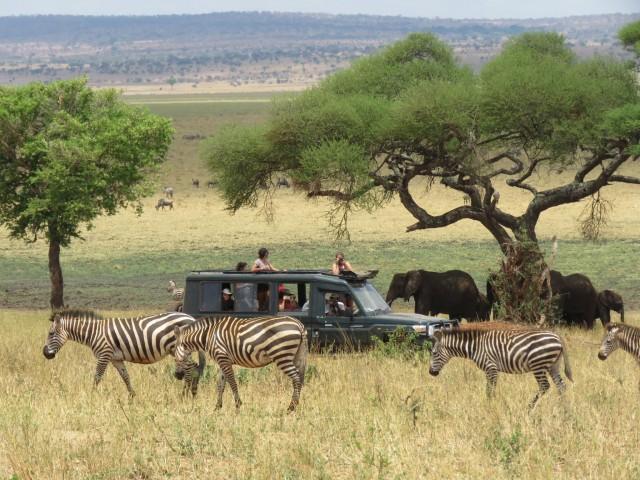 Luxury Safari 7days 6nights…