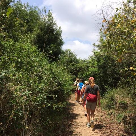 Pugu Hills Hiking by HOE