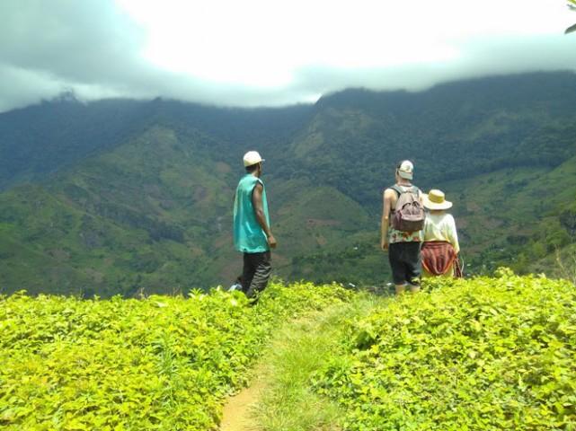 Uluguru Mountains Hiking…